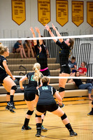 PANTHER VOLLEYBALL VS VERNDALE