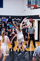 PANTHER GBB VS BROWERVILLE-EAGLE VALLEY_20170109_0009
